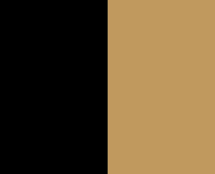 Black/Camel